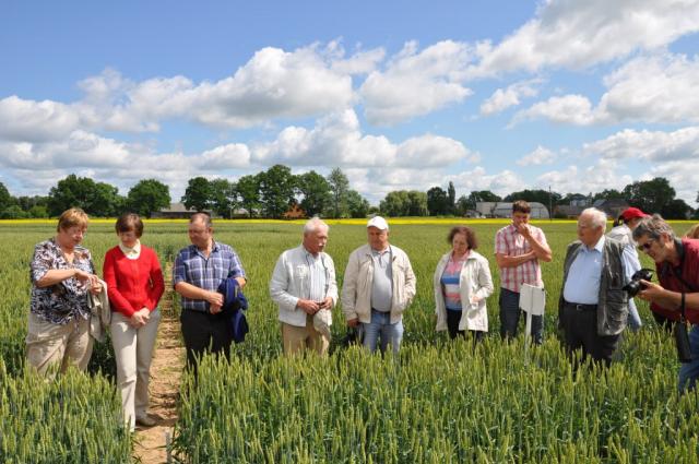 LAAFS surveyed cereals volume in the Priekuli Plant Breeding Institute