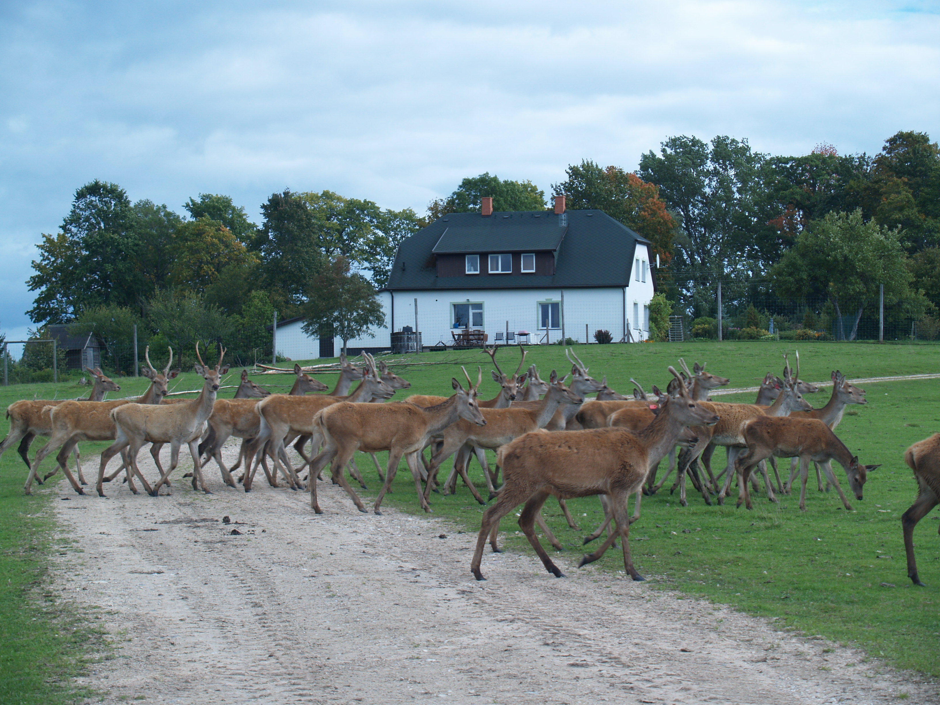 The Biotechnology and the Scientific Institute of Veterinary Medicine in co-operation partner The Deers Garden